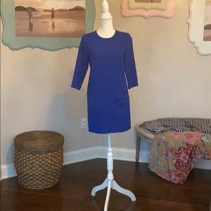 Ann Taylor royal blue shift dress